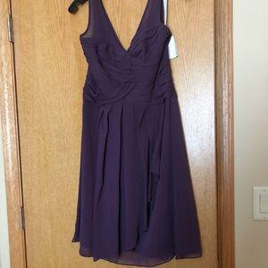 David's Bridal Bridesmaids Dress Plum/Deep Purple.